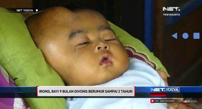 Sofia Nabila Divonis 2 Tahun Bertahun Hidup