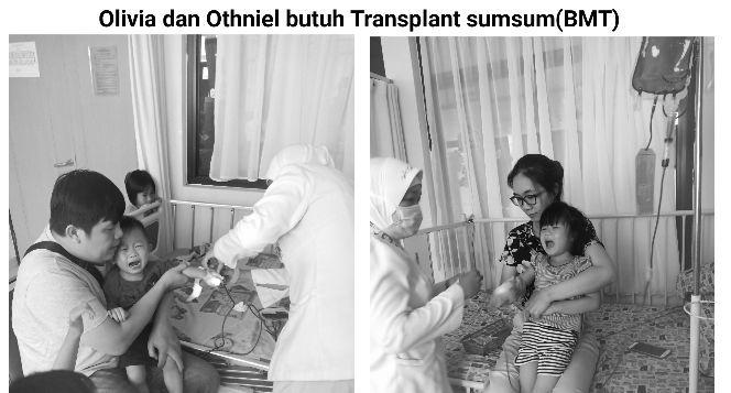 Bantu olivia transplant sumsum tulang belakang